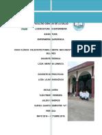 Caso Clinico Yudi y Langer Completooo