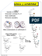 RNA-transcripcion.pdf