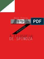 Introducao a filosofia de Spinosa - Amauri Ferreira.pdf
