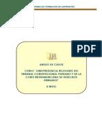 Anexo de Casos II Nivel (3)