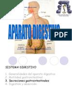 14. Fisiologia Digestivo Ok