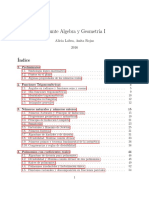 Apunte AlgGeo1 Hasta AplicacionesTeoFundamentalAlgebraJunio2016