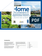 200 Small Business Investment Ideas UNDP