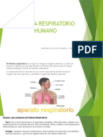 Control 3 Anatomofisiologia Humana y primeros auxilios-.pptx