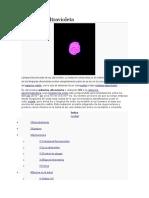 Radiación ultravioleta.docx