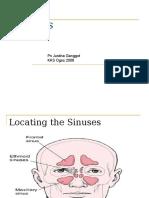 NMNE 3112 - Sinusitis
