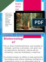 Biotecnología de La Madera