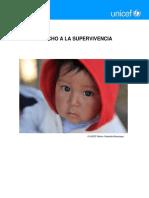 Derecho a La Proteccion UNICEF