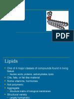 5. Lemak Lipid