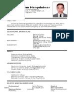 Resume-Alvin Punzalan Mangulabnan