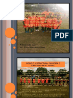 Estructura y Metodologia de Entrenamiento Para La Formación