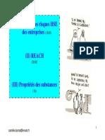 2007-10-25, Prevention Des Risques HSE Des Entreprises (3)