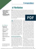 Fibrilación Atrial Canina