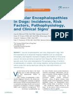 Emcefalopatias Vasculares en Caninos