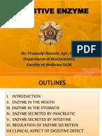 Digestive Enzyme - Biochemistry UGM (2015)