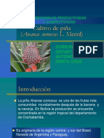 010600401 PIÑA.pdf