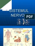 sistemul-nervos.ppt