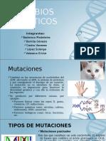 CAMBIOS-GENETICOS
