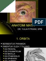 Yulia Anatomi Mata