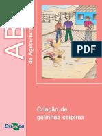 Galinha.pdf