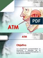 Morfologia Oral - IIsem-ATM -2016