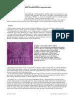 escritura_visigotica.pdf