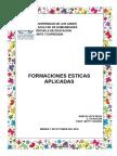 FORMACION ESTETICA APLICADA