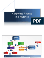 Corporate Finance in a Nutshell 2010