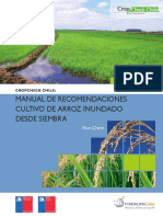 Manualarroz_baja.pdf