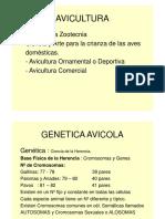 Genetica Avicola 2016