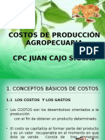Costos Agropecuarios
