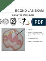 Bio12-LabEx2-Review.pptx
