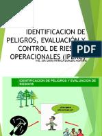 Identificacion de Peligros Y Controles Operacionales IPER Ppt
