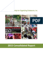 FORGE 2015 Consolidated Report