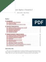 Apunte AlgGeo1 Hasta Congruencias 2016