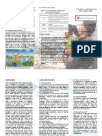 Triptico (PDF)