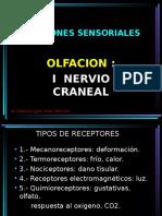 Funciones Sensoriales Par Craneal i Vii f