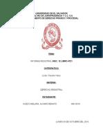 Informe Registral Hecho