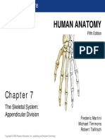 Ch7_Appendicular.pdf