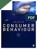 Consumer Behaviour Blythe
