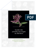 Guide des plantes sauvages du Benelux (read excerpts, oct. 2016)