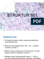 3. Struktur Sel