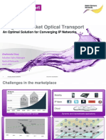 Integrated Packet Optical Transport