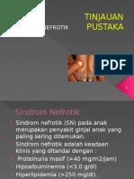ppt sindrom nefrotik