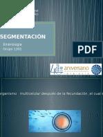 SEGMENTACION 1301