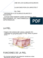 LA-PIEL