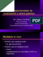 Modelos Gastritis y Ulcera Gastrica A