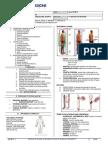 Anatomy 1.2 Anatomy in Motion