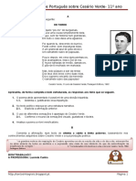 fichaformativa-cesrioverde2-130520162715-phpapp02.doc