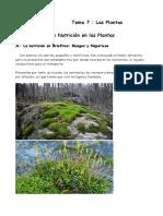 FISIOLOGÍA de Plantas